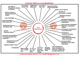 fps-metabolism-chart-fps